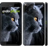 Чехол для HTC One X9 Красивый кот 3038m-783