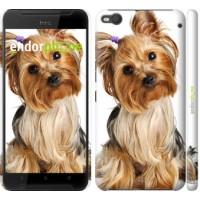 Чехол для HTC One X9 Йоркширский терьер с хвостиком 930m-783