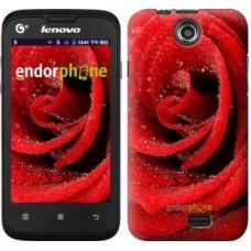 Чехол для Lenovo A300 Красная роза 529u-229