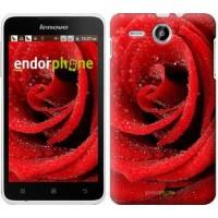 Чехол для Lenovo A529 Красная роза 529u-200
