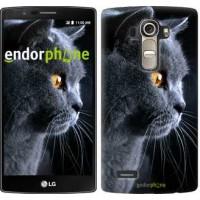 Чехол для LG G4 H815 Красивый кот 3038u-118