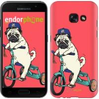 Чехол для Samsung Galaxy A3 (2017) Мопс на велосипеде 3072m-443