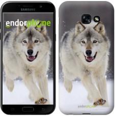 Чехол для Samsung Galaxy A5 (2017) Бегущий волк 826c-444