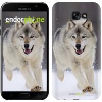 Чехол для Samsung Galaxy A7 (2017) Бегущий волк 826m-445