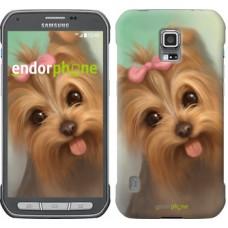 Чехол для Samsung Galaxy S5 Active G870 Нарисованный йоркширский терьер 928u-364