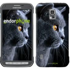 Чехол для Samsung Galaxy S5 Active G870 Красивый кот 3038u-364