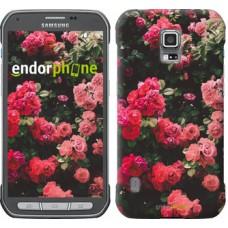 Чехол для Samsung Galaxy S5 Active G870 Куст с розами 2729u-364