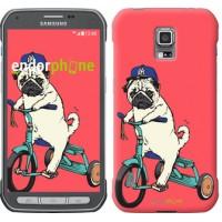 Чехол для Samsung Galaxy S5 Active G870 Мопс на велосипеде 3072u-364