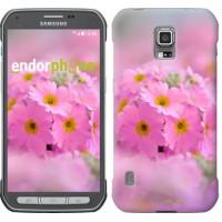 Чехол для Samsung Galaxy S5 Active G870 Розовая примула 508u-364