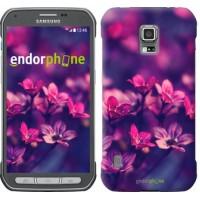 Чехол для Samsung Galaxy S5 Active G870 Пурпурные цветы 2719u-364