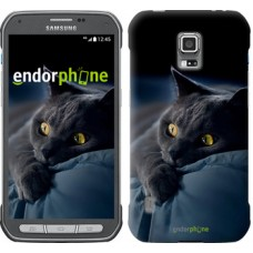 Чехол для Samsung Galaxy S5 Active G870 Дымчатый кот 825u-364