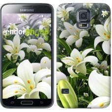 Чехол для Samsung Galaxy S5 Duos SM G900FD Белые лилии 2686c-62