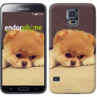 Чехол для Samsung Galaxy S5 Duos SM G900FD Boo 2 890c-62