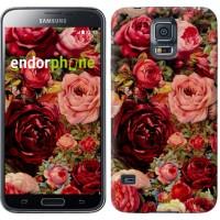 Чехол для Samsung Galaxy S5 Duos SM G900FD Цветущие розы 2701c-62