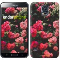 Чехол для Samsung Galaxy S5 Duos SM G900FD Куст с розами 2729c-62