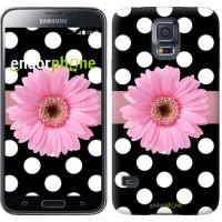 Чехол для Samsung Galaxy S5 Duos SM G900FD Горошек 2 2147c-62