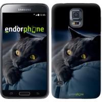 Чехол для Samsung Galaxy S5 Duos SM G900FD Дымчатый кот 825c-62