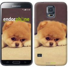 Чехол для Samsung Galaxy S5 G900H Boo 2 890c-24