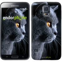 Чехол для Samsung Galaxy S5 G900H Красивый кот 3038c-24