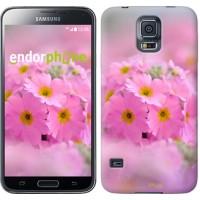 Чехол для Samsung Galaxy S5 G900H Розовая примула 508c-24