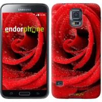 Чехол для Samsung Galaxy S5 G900H Красная роза 529c-24