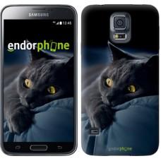 Чехол для Samsung Galaxy S5 G900H Дымчатый кот 825c-24