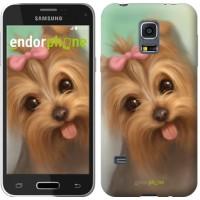 Чехол для Samsung Galaxy S5 mini G800H Нарисованный йоркширский терьер 928m-44