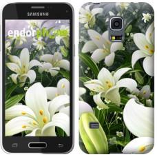 Чехол для Samsung Galaxy S5 mini G800H Белые лилии 2686m-44