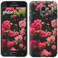Чехол для Samsung Galaxy S5 mini G800H Куст с розами 2729m-44