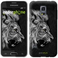 Чехол для Samsung Galaxy S5 mini G800H Лев 1080m-44