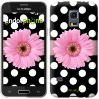 Чехол для Samsung Galaxy S5 mini G800H Горошек 2 2147m-44