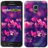 Чехол для Samsung Galaxy S5 mini G800H Пурпурные цветы 2719m-44