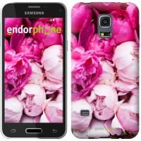 Чехол для Samsung Galaxy S5 mini G800H Розовые пионы 2747m-44