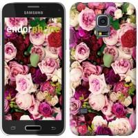 Чехол для Samsung Galaxy S5 mini G800H Розы и пионы 2875m-44