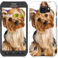 Чехол для Samsung Galaxy S6 active G890 Йоркширский терьер с хвостиком 930u-331