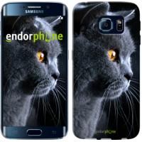 Чехол для Samsung Galaxy S6 Edge G925F Красивый кот 3038c-83