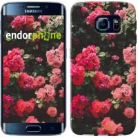 Чехол для Samsung Galaxy S6 Edge G925F Куст с розами 2729c-83