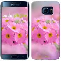 Чехол для Samsung Galaxy S6 Edge G925F Розовая примула 508c-83