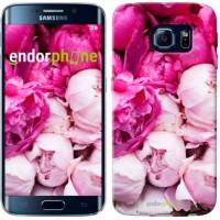 Чехол для Samsung Galaxy S6 Edge G925F Розовые пионы 2747c-83