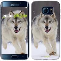 Чехол для Samsung Galaxy S6 Edge G925F Бегущий волк 826c-83