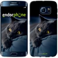 Чехол для Samsung Galaxy S6 Edge G925F Дымчатый кот 825c-83
