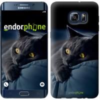 Чехол для Samsung Galaxy S6 Edge Plus G928 Дымчатый кот 825u-189
