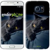 Чехол для Samsung Galaxy S6 G920 Дымчатый кот 825c-80