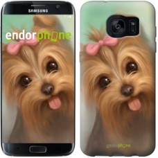 Чехол для Samsung Galaxy S7 Edge G935F Нарисованный йоркширский терьер 928c-257