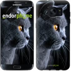 Чехол для Samsung Galaxy S7 Edge G935F Красивый кот 3038c-257
