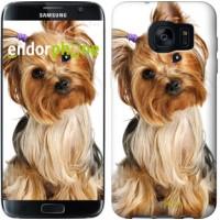 Чехол для Samsung Galaxy S7 Edge G935F Йоркширский терьер с хвостиком 930c-257