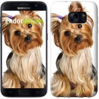 Чехол для Samsung Galaxy S7 G930F Йоркширский терьер с хвостиком 930m-106
