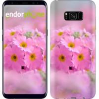 Чехол для Samsung Galaxy S8 Plus Розовая примула 508c-817