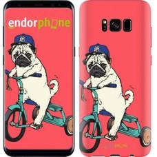 Чехол для Samsung Galaxy S8 Мопс на велосипеде 3072c-829
