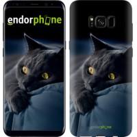 Чехол для Samsung Galaxy S8 Дымчатый кот 825c-829